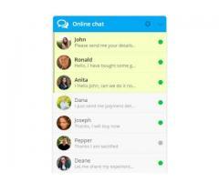 Online Chat Plugin Demo - 2/4