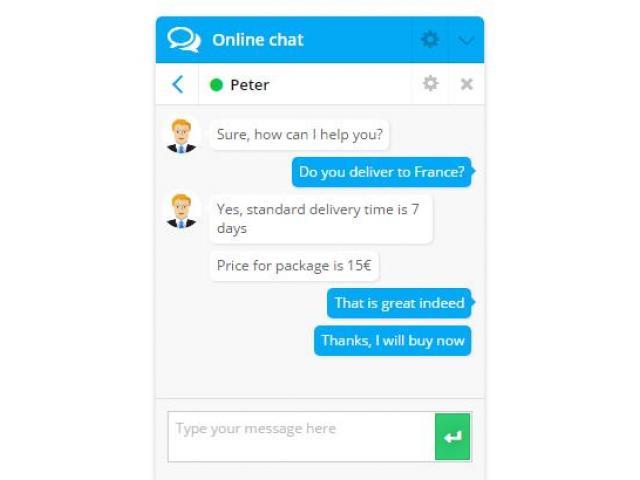 Online Chat Plugin Demo - 3/4